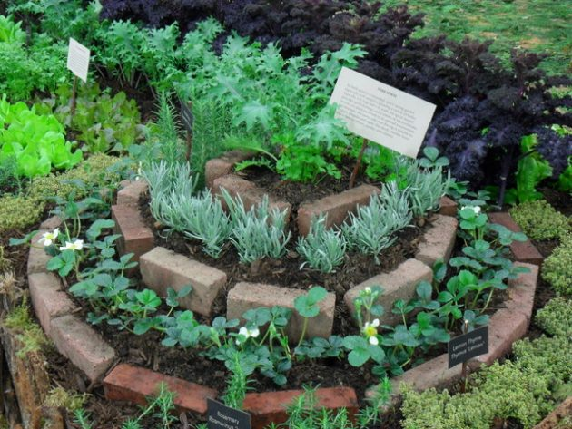 12 Spiral Garden Designs Ideal For Small Spaces