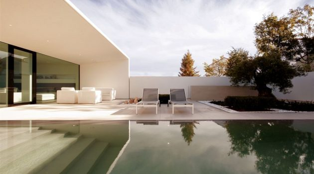 Diving In: An Inground Pool Design Mini-Guide for Homeowners