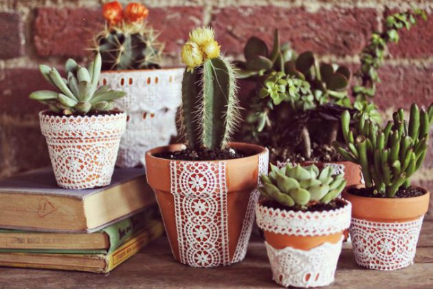 16 Simple Yet Beautiful DIY Cactus Pots That Everyone Can Make