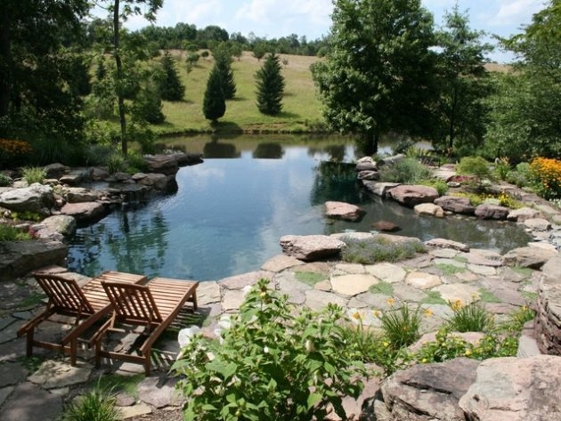 17 Engrossing Natural Swimming Pools That Will Delight You