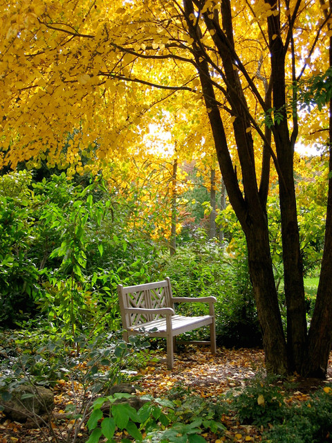16 Magnificent Autumn Decorating Ideas For Your Backyard