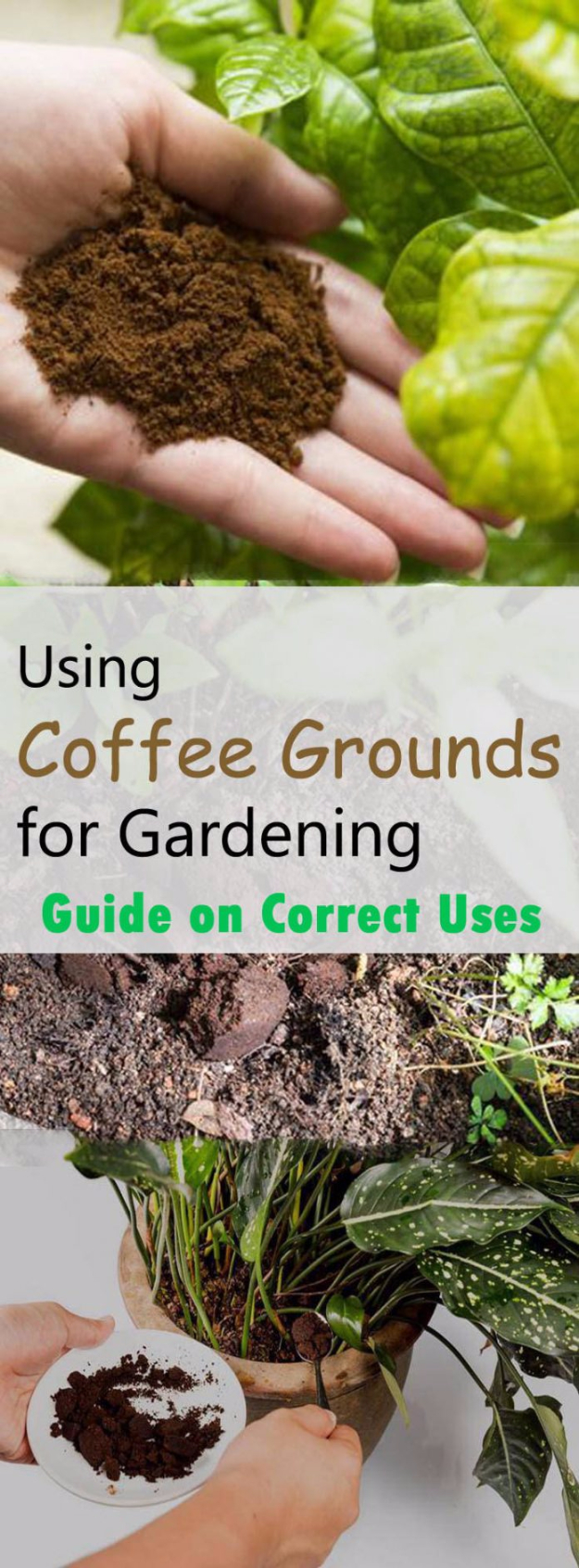 15 Awesome Landscaping And Garden Hacks You'll Find Useful