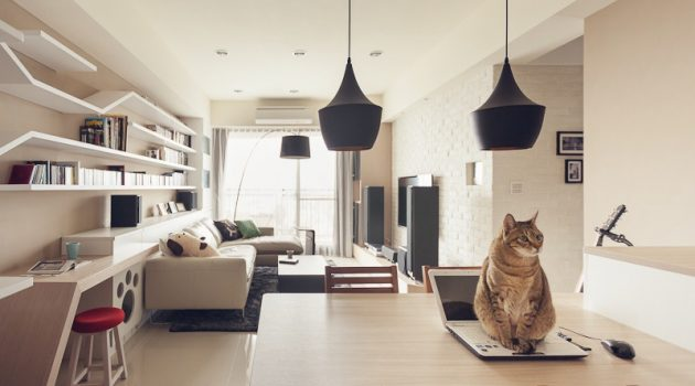 10 Pet-Friendly Designs for Your New Home