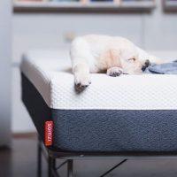 Somzi Mattress Review: A True Restful Night Sleep