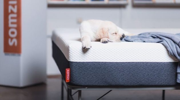 Somzi Mattress Review: A True Restful Night Sleep