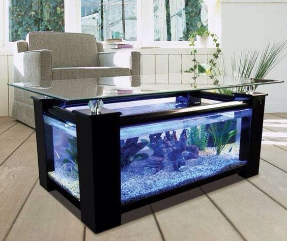 17 Remarkable Aquarium Designs To Enhance & Beautify Your Interior