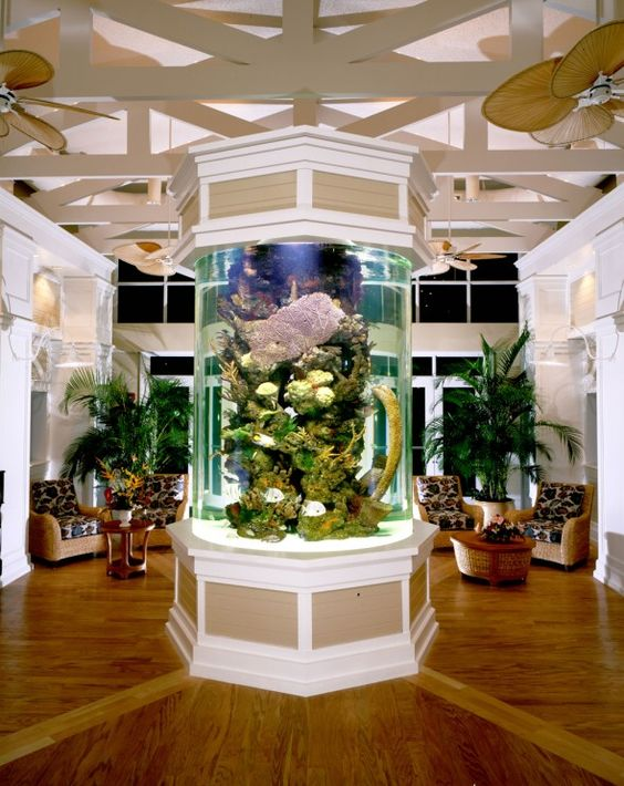 Home Aquarium Interior Design | Flisol Home