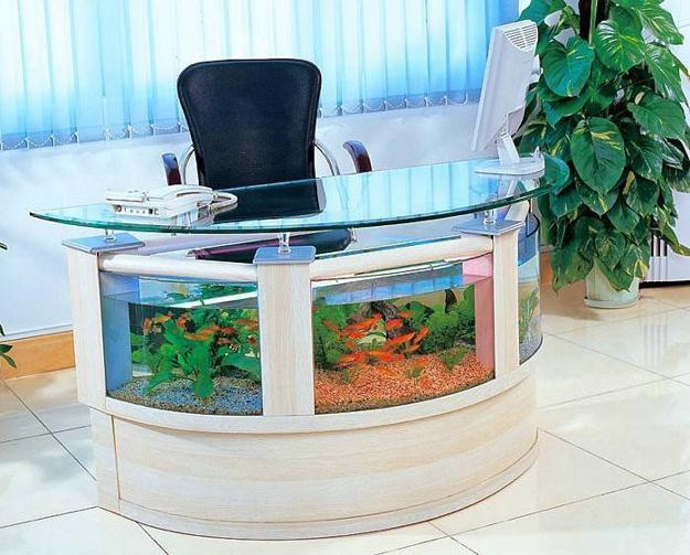 17 Remarkable Aquarium Designs To Enhance & Beautify Your Interior