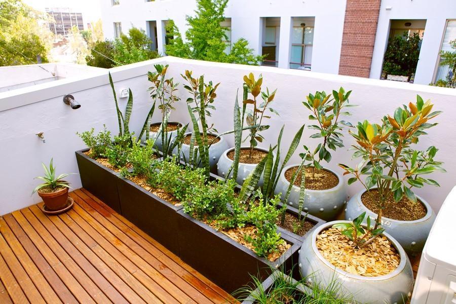5 Creative Ideas for Small City Gardens