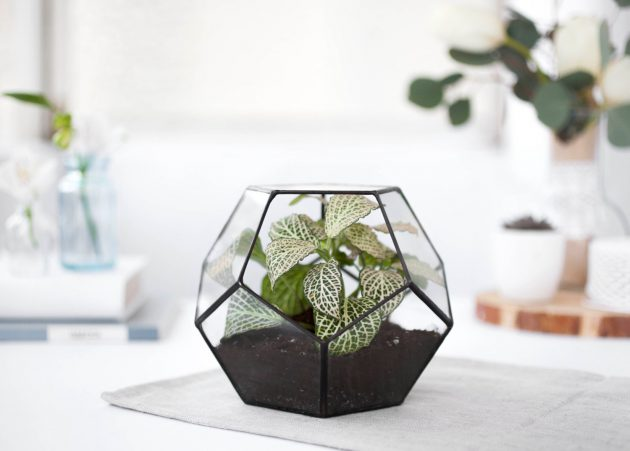 16 Stunning Geometric Planter Designs For The Perfectionist in You