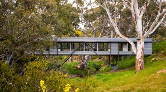 Bridge House by Max Pritchard Architect in Adelaide, Australia