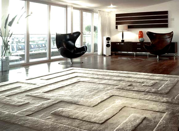 Design Ideas for Your Modern Home on home rug and new girl, area rug on carpet, shaw homes with carpet,