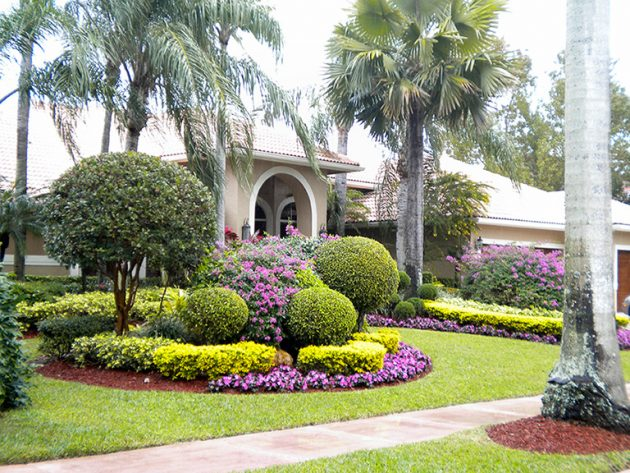 Low Maintenance Landscaping Ideas Curb Appeal Shrubs
