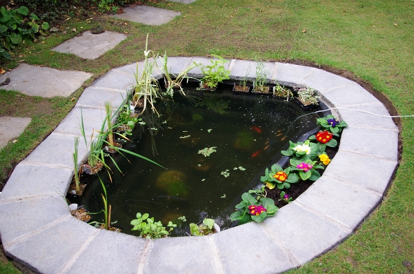 15 Awe Inspiring Garden Ponds That You Can Make By Yourself