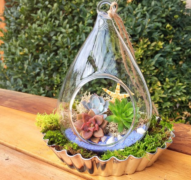 15 Captivating Terrarium Designs To Decorate Your Home In An Alternative Fashion