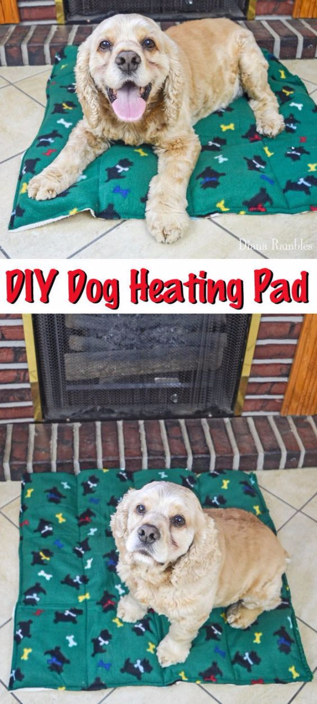 15 Crazy Dog Hacks You Really Need To Know