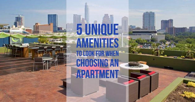 5 Unique Amenities to Look for When Choosing an Apartment
