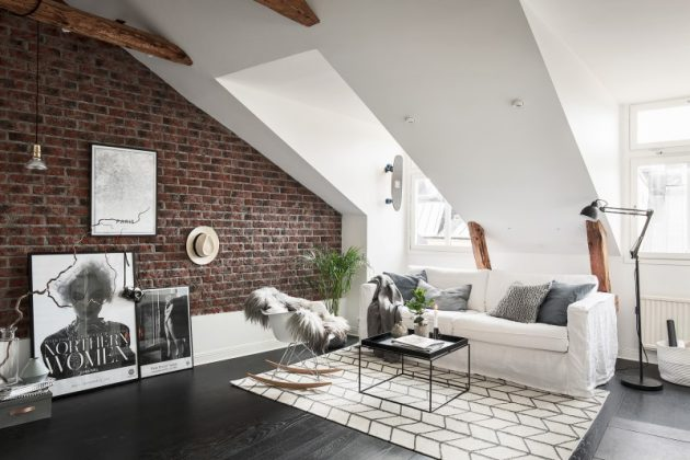 5 Home Cleaning Hacks: From Vacuum Cleaners to Sofas