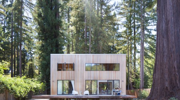 Loewinger Residence by Shevi Loewinger and Ravit Kaplan in Guerneville, California