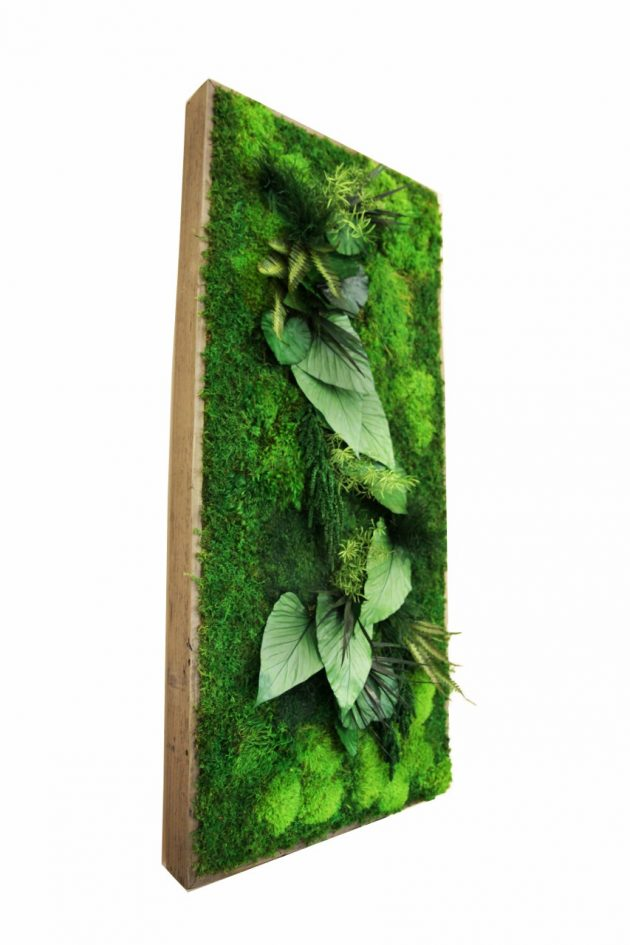 15 Spectacular Moss Wall Art Designs That Redefine The Living Wall Concept