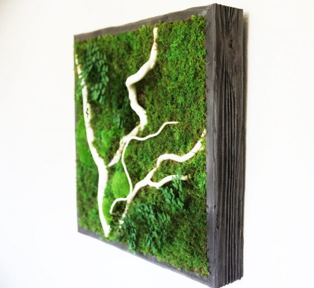 15 Spectacular Moss Wall Art Designs That Redefine The