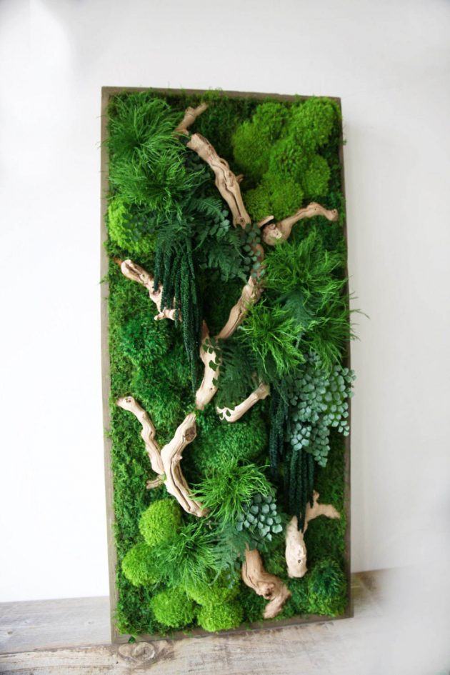 15 Spectacular Moss Wall Art Designs That Redefine The Living Concept