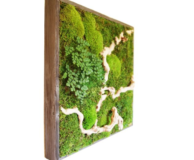Genial 15 Spectacular Moss Wall Art Designs That Redefine The Living Wall Concept