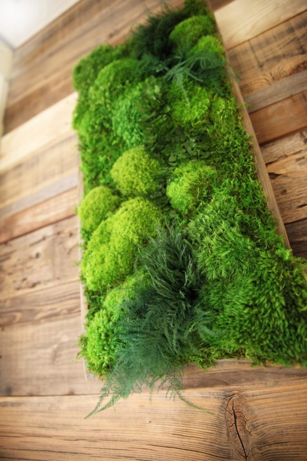 15 spectacular moss wall art designs that redefine the living wall concept. Black Bedroom Furniture Sets. Home Design Ideas