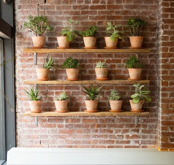 17 Most Creative Ways For Creating Vertical Planter Display In The Home