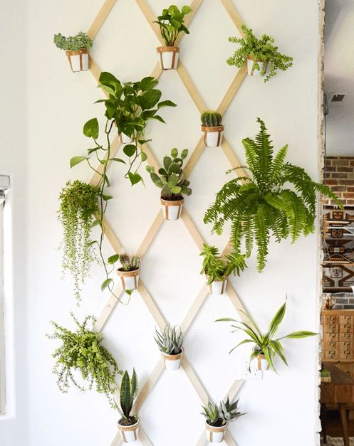 17 Most Creative Ways For Creating Vertical Planter