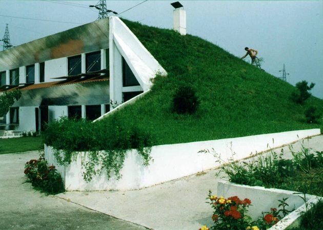 Green Design for Homes