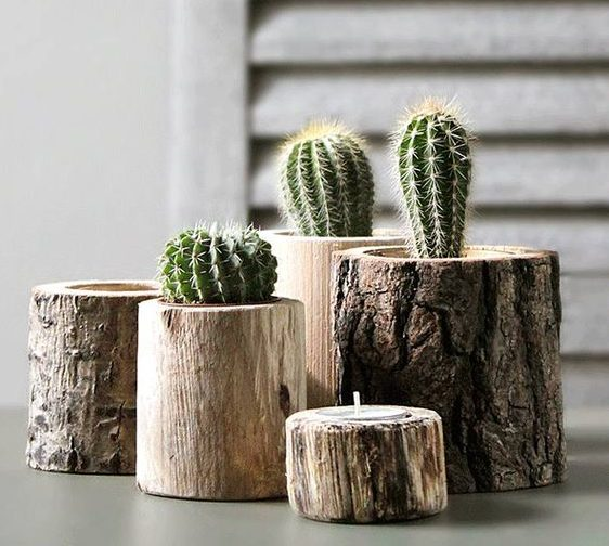 18 Outstanding Tree Stump Decorations To Add Rustic Touch In The Home