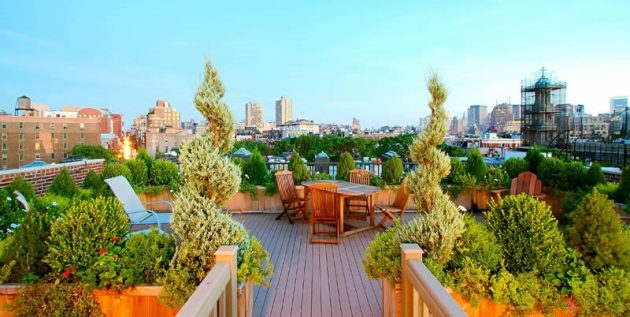 The Stunning Beauty And Practicality Of Rooftop Gardens