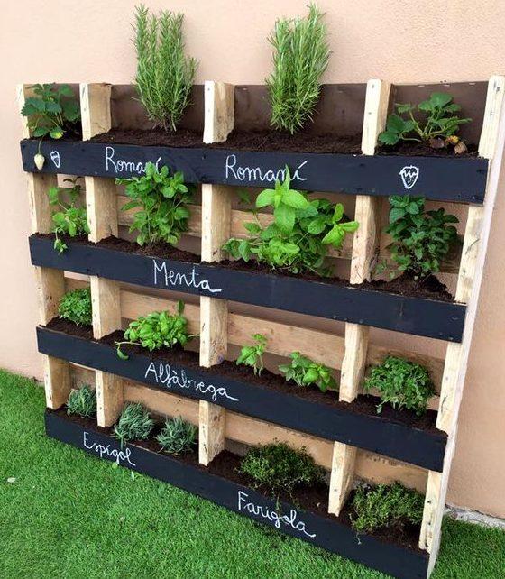 Outdoor Patio Ideas Deck