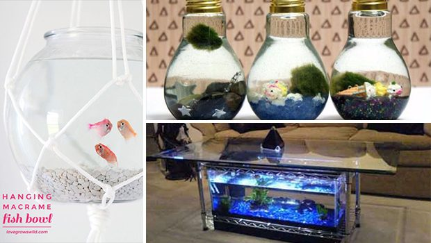 15 Awesome DIY Aquarium Ideas That Are Full Of Creativity