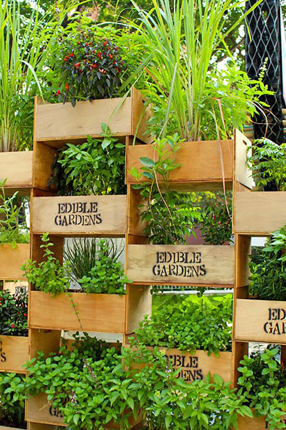 22 Awesome DIY Vertical Garden Ideas That Will Refresh ... on Back Wall Garden Ideas id=82632