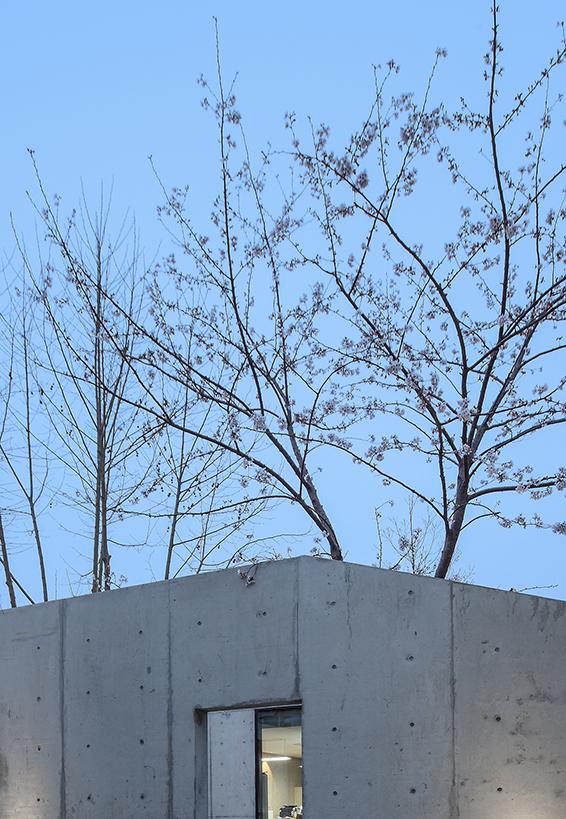 Shen Shen Garden – Private office in a garden of ease and ...