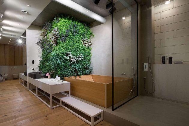 Trồng cây trong nhà tắm, nên hay không?