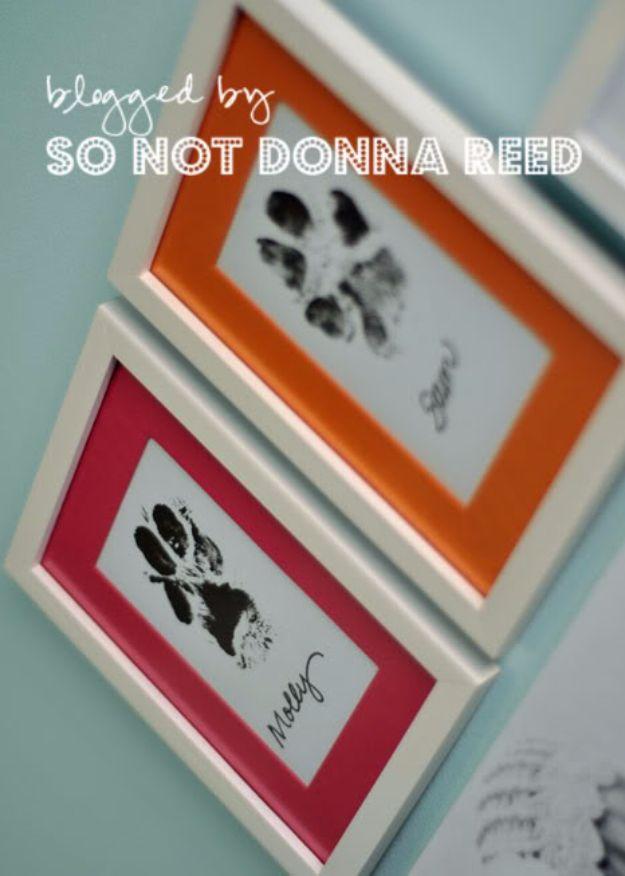 16 Cool DIY Projects Any Dog Owner Will Appreciate