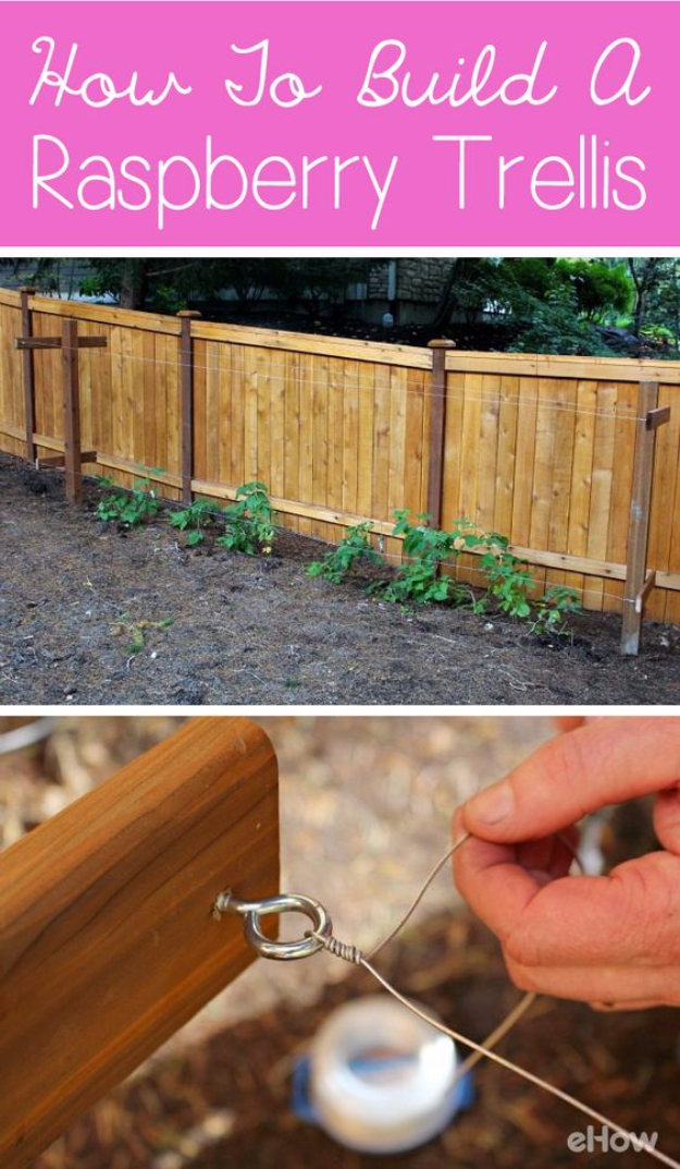 15 Useful DIY Gardening Ideas You Can Use During Fall