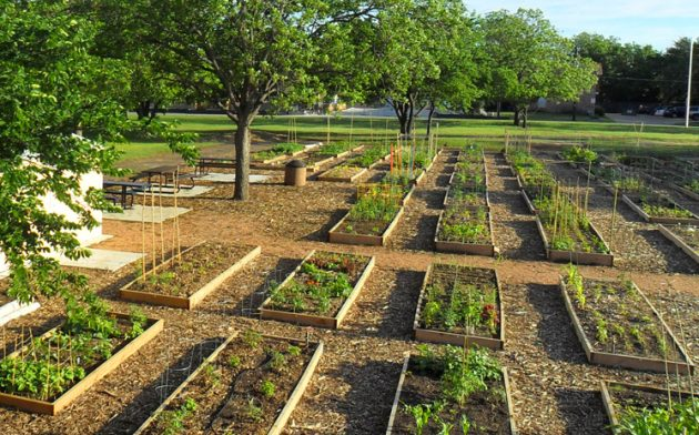 How To Turn Your Neighborhood Into A Thriving Community