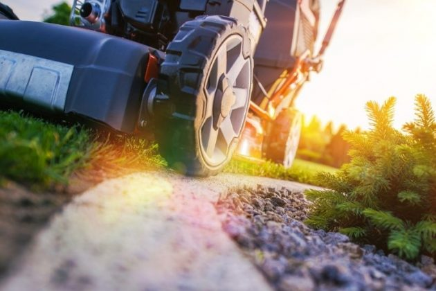 5 Lawn Care Services Homeowners Need