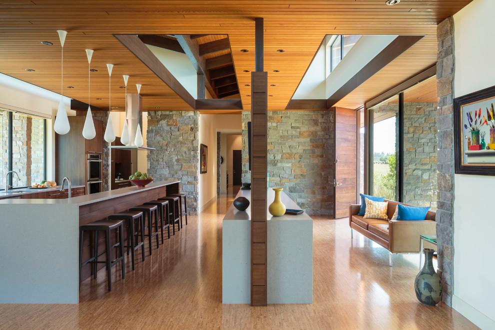 Image Result For Mid Century Modern Kitchen Designs
