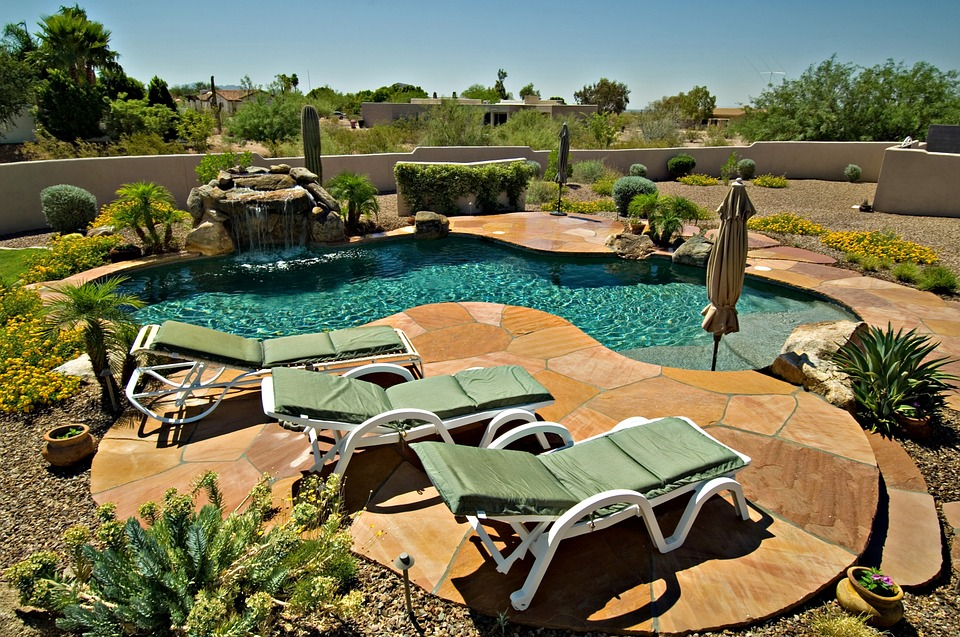 4 Plants to Consider when Landscaping an Arizona Home