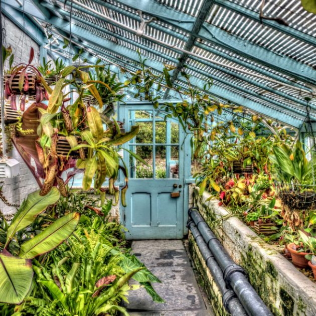 Best British Gardens From Rural Locations to Inner-city Botanical Paradises