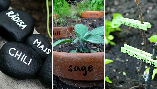 15 Cute DIY Garden Marker Ideas For Your Spring Garden