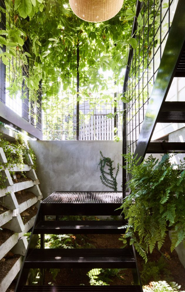 Terrarium House by John Ellway Architect in Brisbane, Australia
