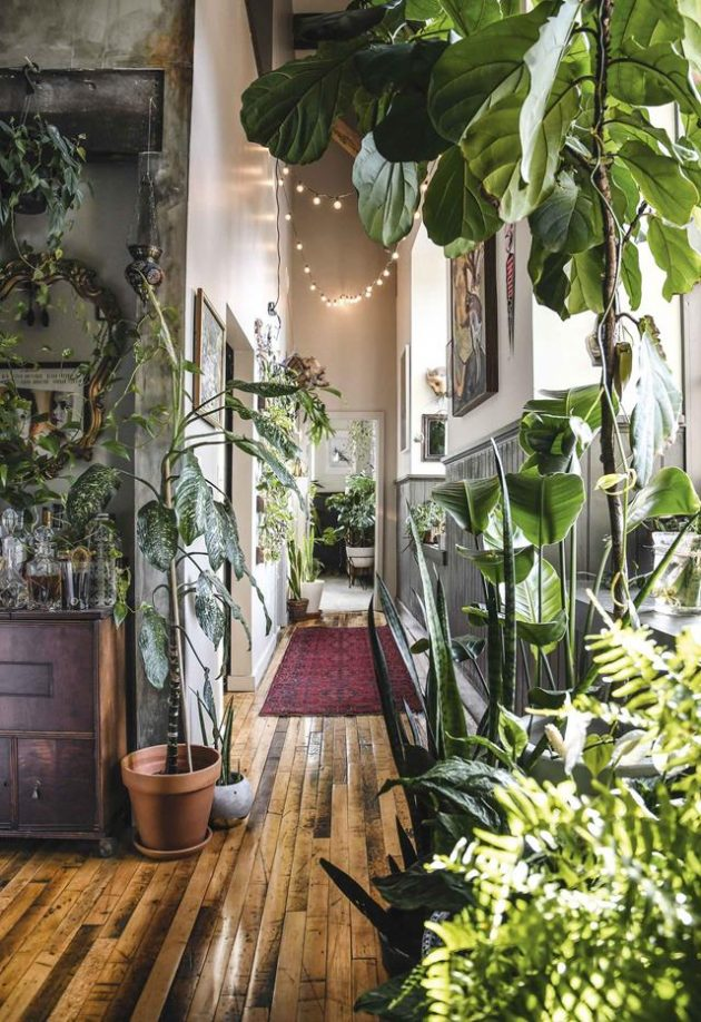 4 Astonishing Indoor Garden Spaces to Uplift the Spirit of Your Home