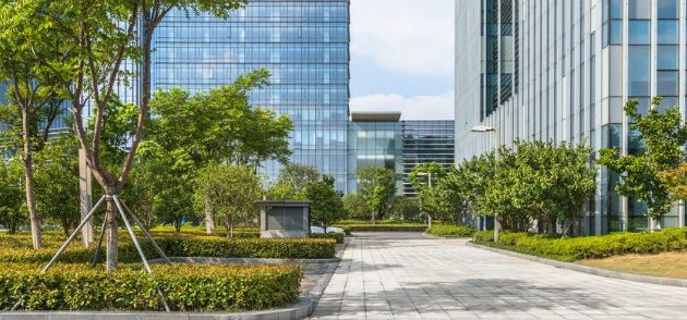 How Landscaping Affects Your Business: First Impressions Matter