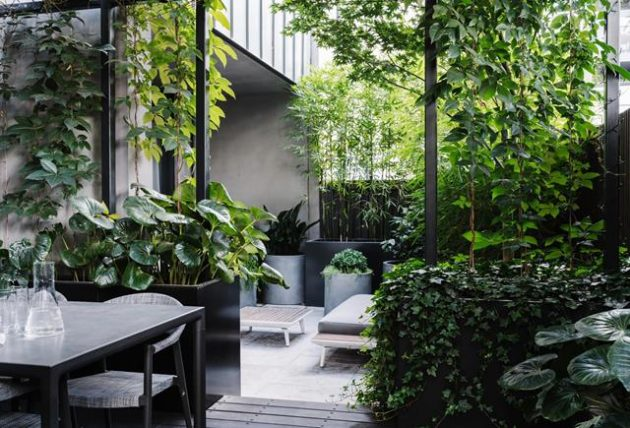 How to Create the Inner City Terrace Garden Into Your Private Oasis